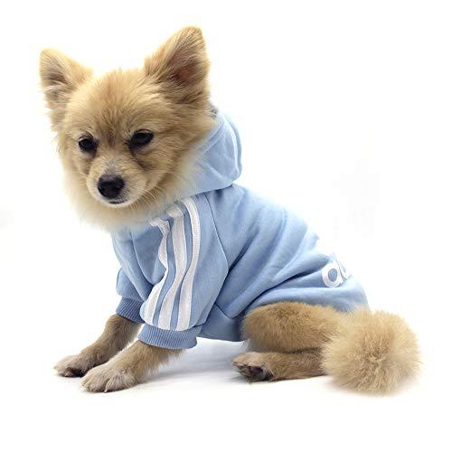 QiCheng&LYS Hundemantel Adidog Hund Hoodies Kleidung, Pet Puppy Katze Niedlicher Baumwoll Warm Hoodies Coat Pullover (S,...