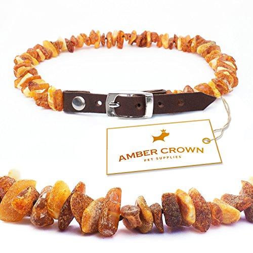 Bernsteinkette für Hunde und Katzen mit Lederschließe, gegen Zecken und Flöhe