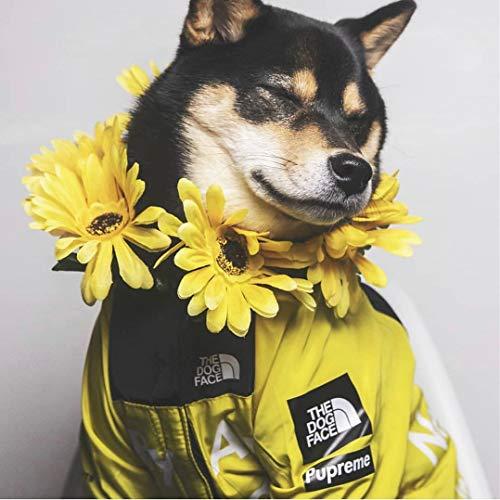 The Dog Face, modische Hundekleidung, Jacke, Polyester, Haustier-Outfit, niedliche Hunde-Dekoration, Mäntel, für...