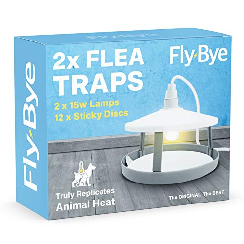 DIY Doctor FLEA Traps x 2