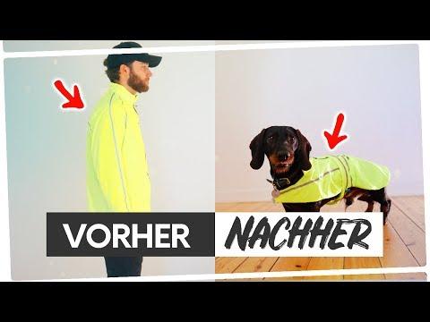 ▷Nähen für Hunde 🐶 (ohne Schnittmuster) Aus alt mach NEU!