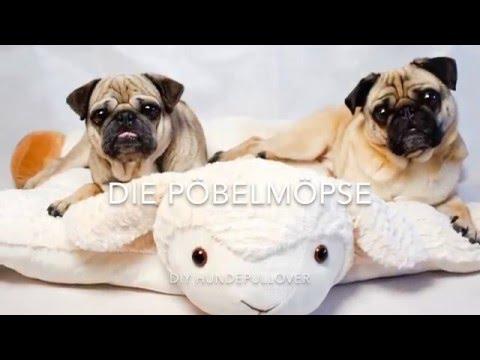 DIY Hundepullover nähen